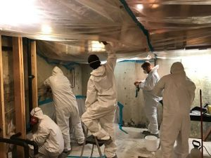 Mold Removal Crew Working OnSite